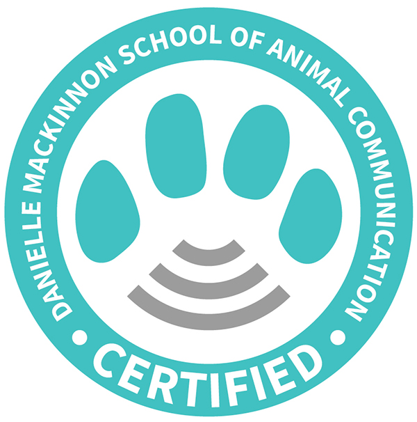DM certification seal
