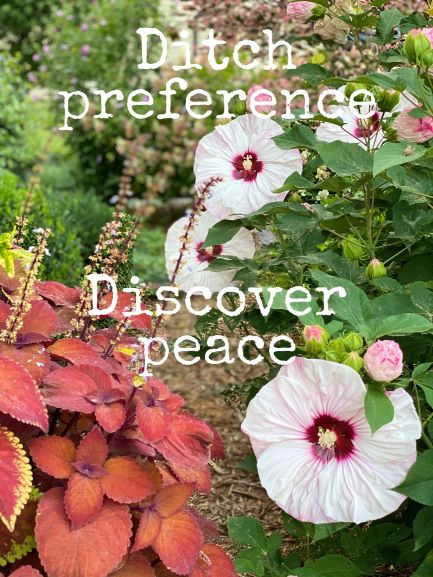 Ditch preference, Discover peace